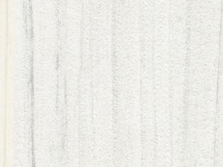 T3078S 沙丘柚木