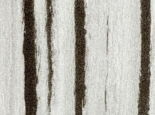 T6075M 斑馬木