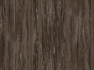 C6307木化石